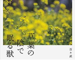 bk-dodo-kusaha-02.jpg