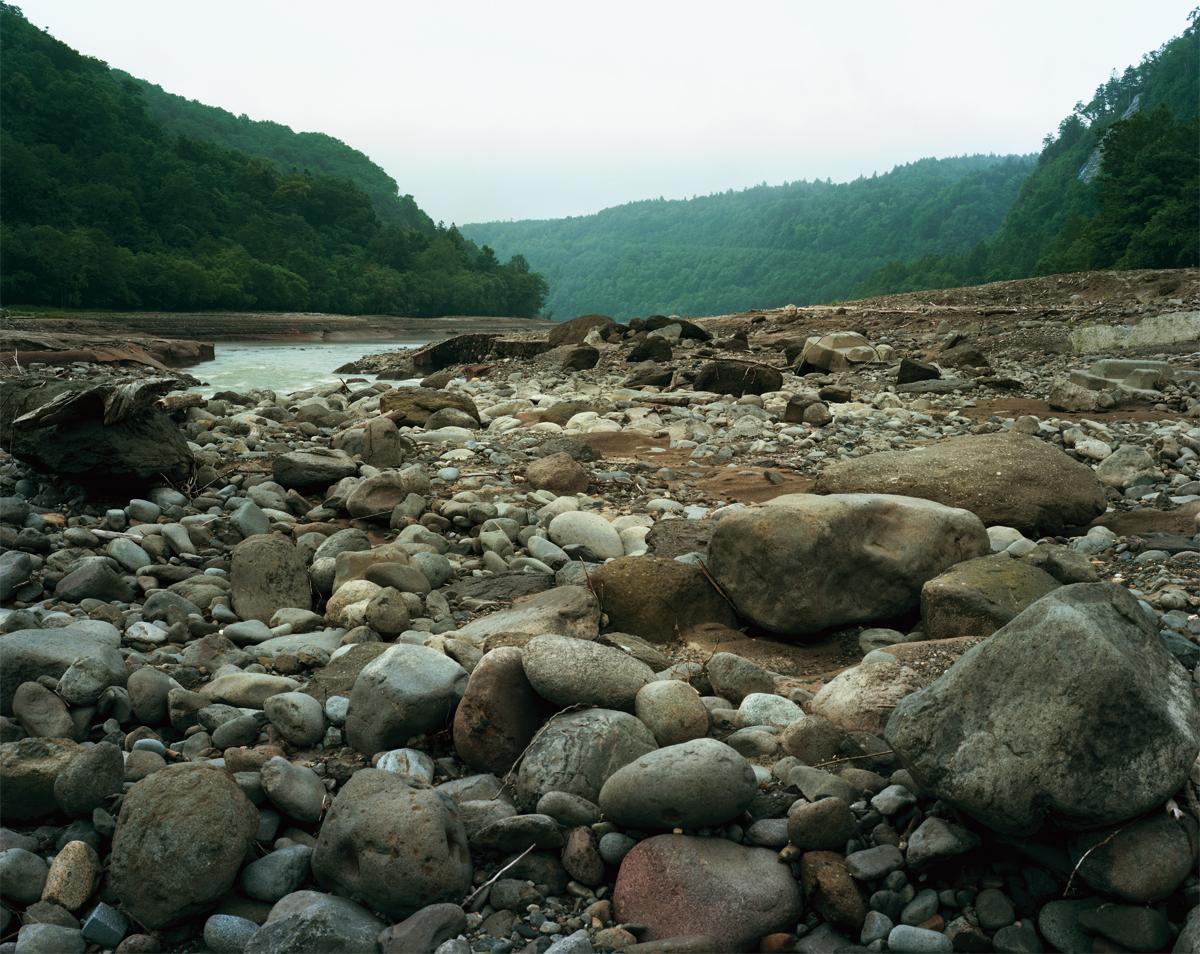 nature01.jpg