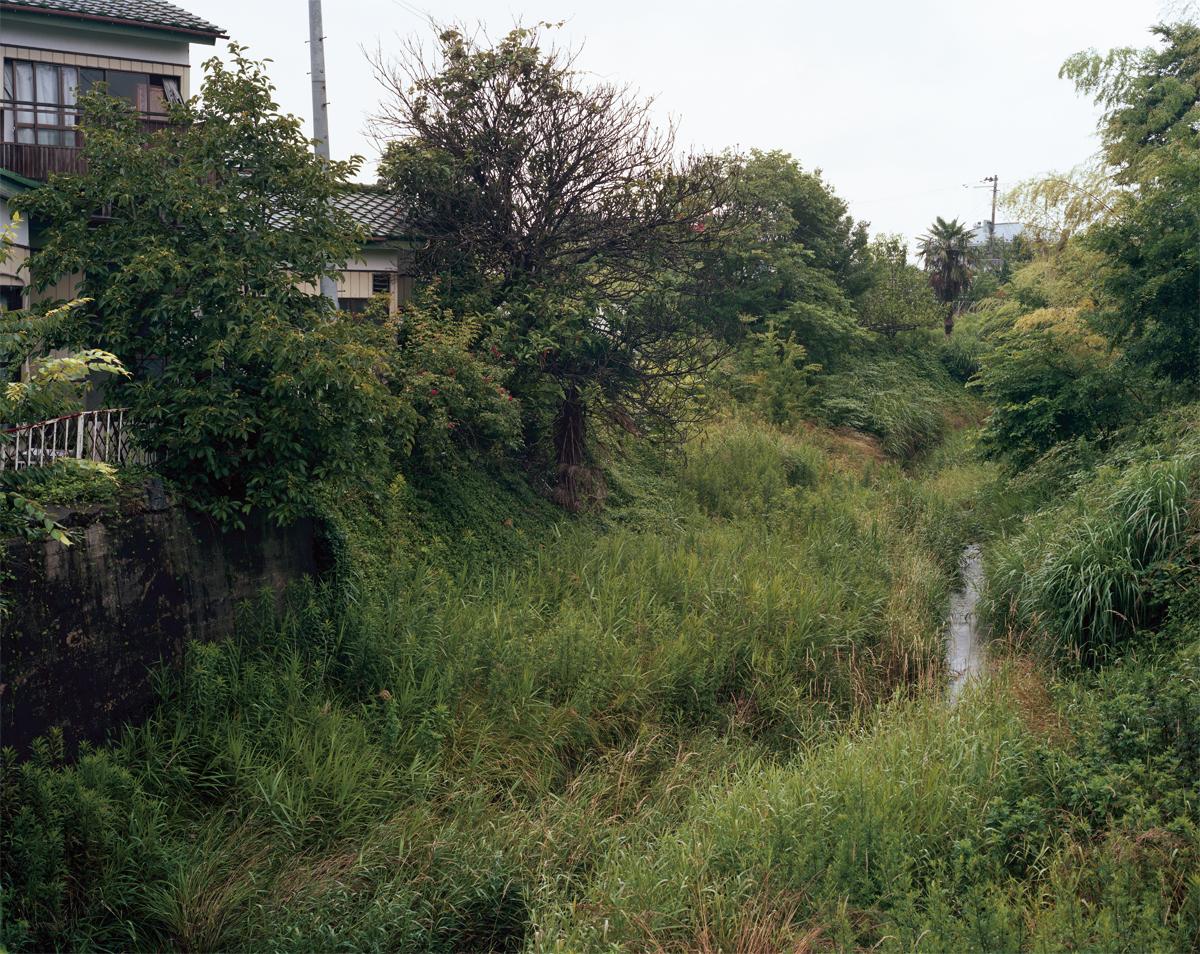 nature23.jpg